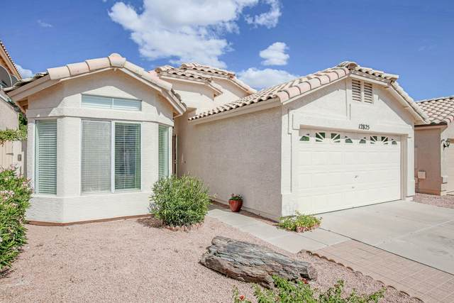 12825 S 45TH Place, Phoenix, AZ 85044 (MLS #6099593) :: Homehelper Consultants