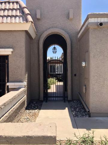 25269 S Berry Brook Drive, Sun Lakes, AZ 85248 (MLS #6099603) :: Lucido Agency