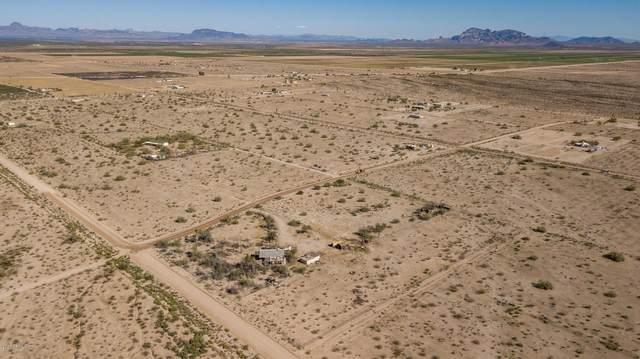 10105 S 542nd Avenue, Tonopah, AZ 85354 (MLS #6099673) :: Brett Tanner Home Selling Team