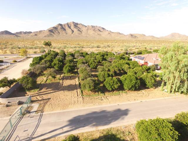 0 E Starflower Court, Queen Creek, AZ 85142 (MLS #6099692) :: Conway Real Estate