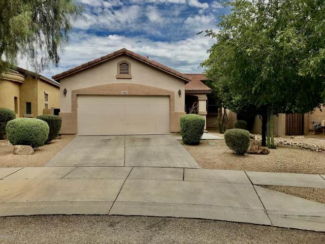 2510 W Brilliant Sky Drive, Phoenix, AZ 85085 (MLS #6099698) :: Long Realty West Valley
