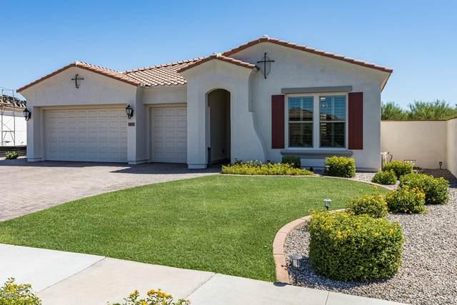 10404 E Gamma Avenue, Mesa, AZ 85212 (MLS #6099737) :: The Property Partners at eXp Realty