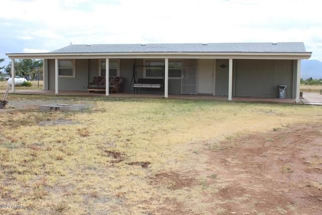 6291 S Pintek Lane, Hereford, AZ 85615 (MLS #6099759) :: CANAM Realty Group