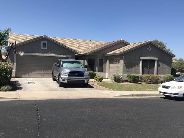 17308 W Marshall Lane, Surprise, AZ 85388 (MLS #6099783) :: The Laughton Team
