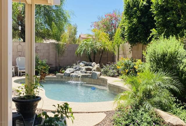 6450 S Kimberlee Way, Chandler, AZ 85249 (MLS #6099825) :: Brett Tanner Home Selling Team