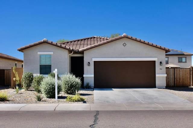 906 E Davis Lane, Avondale, AZ 85323 (MLS #6099832) :: RE/MAX Desert Showcase