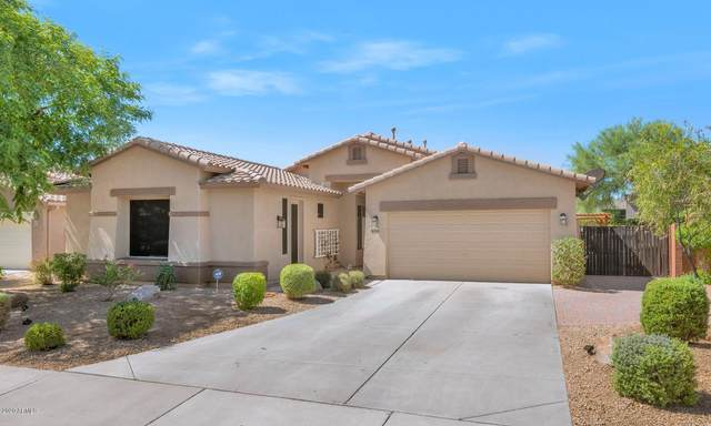 8705 W Bajada Road, Peoria, AZ 85383 (MLS #6099840) :: My Home Group