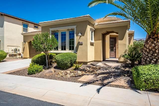 1748 E Alegria Road, Queen Creek, AZ 85140 (MLS #6099857) :: Russ Lyon Sotheby's International Realty
