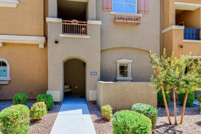 240 W Juniper Avenue #1212, Gilbert, AZ 85233 (MLS #6099875) :: Kepple Real Estate Group
