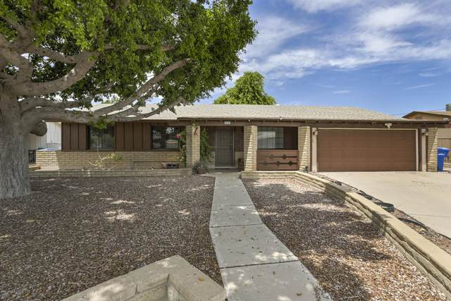 13132 N 23RD Avenue, Phoenix, AZ 85029 (MLS #6099876) :: Klaus Team Real Estate Solutions