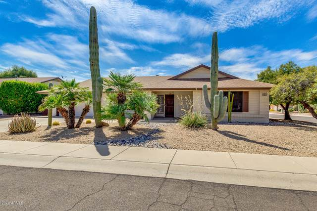 19803 N 146th Drive, Sun City West, AZ 85375 (MLS #6099894) :: Long Realty West Valley