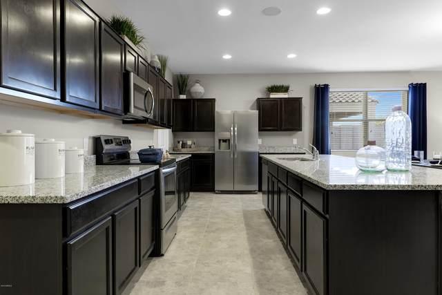 20235 N Cordoba Street, Maricopa, AZ 85138 (MLS #6099935) :: REMAX Professionals
