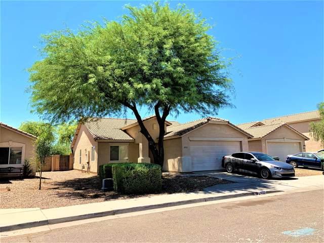 4110 S 62ND Lane, Phoenix, AZ 85043 (MLS #6099939) :: Brett Tanner Home Selling Team