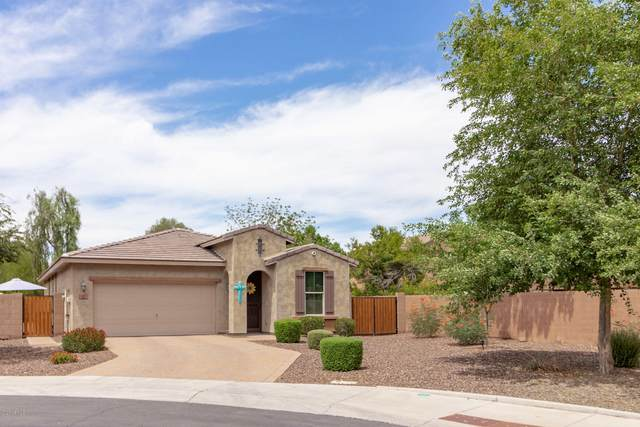 210 E Bernie Lane, Gilbert, AZ 85295 (MLS #6099945) :: Klaus Team Real Estate Solutions