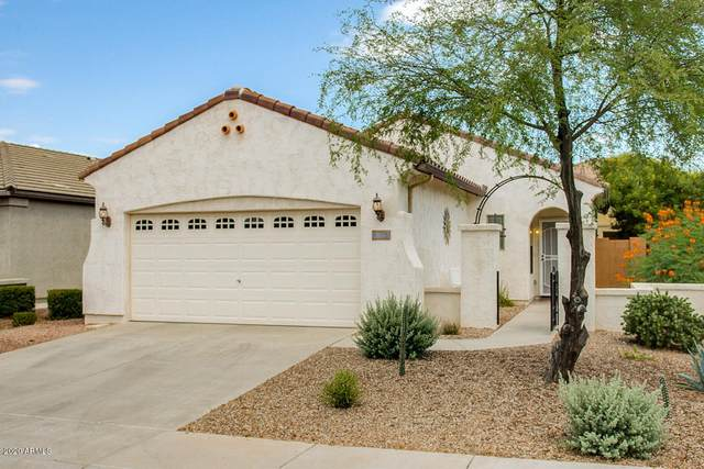 26164 W Burnett Road, Buckeye, AZ 85396 (MLS #6099966) :: The Bill and Cindy Flowers Team