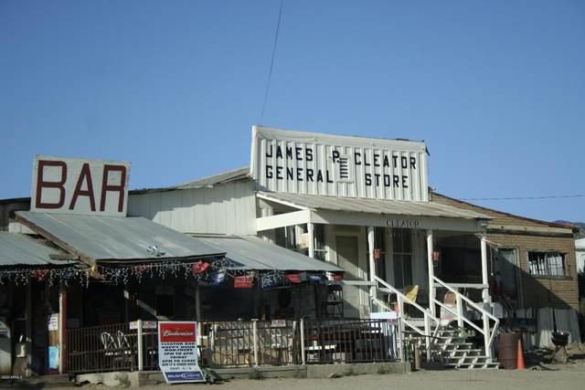 12950 E Crown King Road, Cleator, AZ 86333 (MLS #6100021) :: The Daniel Montez Real Estate Group