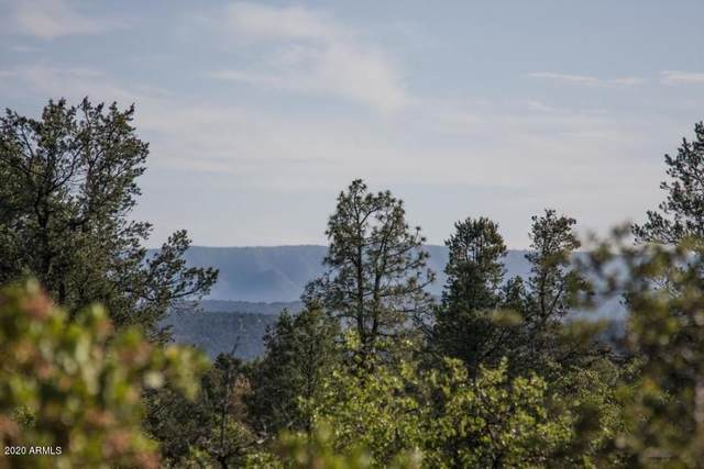 311 S Friendly Glen Road, Payson, AZ 85541 (MLS #6100070) :: My Home Group