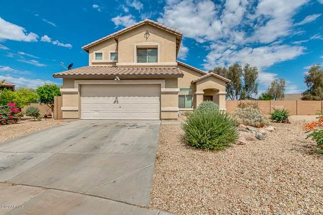 2880 S 256TH Drive, Buckeye, AZ 85326 (MLS #6100083) :: Dijkstra & Co.