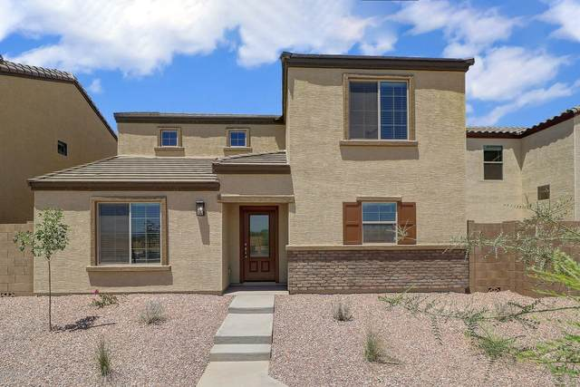 8064 W Agora Lane, Phoenix, AZ 85043 (MLS #6100105) :: Brett Tanner Home Selling Team