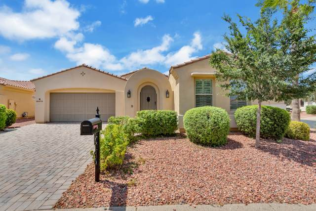 22738 N Las Positas Drive, Sun City West, AZ 85375 (MLS #6100108) :: Klaus Team Real Estate Solutions