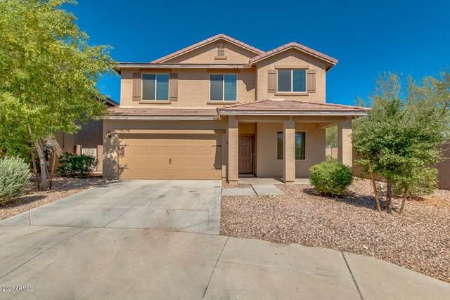 4957 S 243RD Drive, Buckeye, AZ 85326 (MLS #6100175) :: Yost Realty Group at RE/MAX Casa Grande