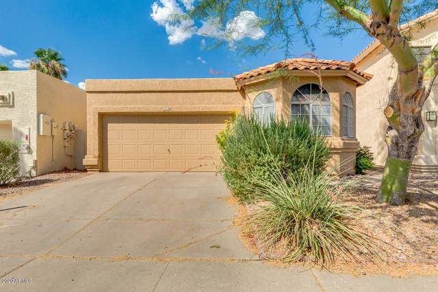 11140 E Yucca Street, Scottsdale, AZ 85259 (MLS #6100190) :: Klaus Team Real Estate Solutions