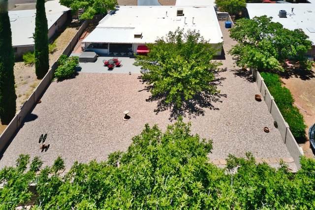 1131 S Via Cabrillo, Sierra Vista, AZ 85635 (MLS #6100211) :: Yost Realty Group at RE/MAX Casa Grande
