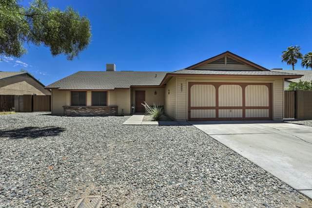 6007 W Harmont Drive, Glendale, AZ 85302 (MLS #6100251) :: TIBBS Realty