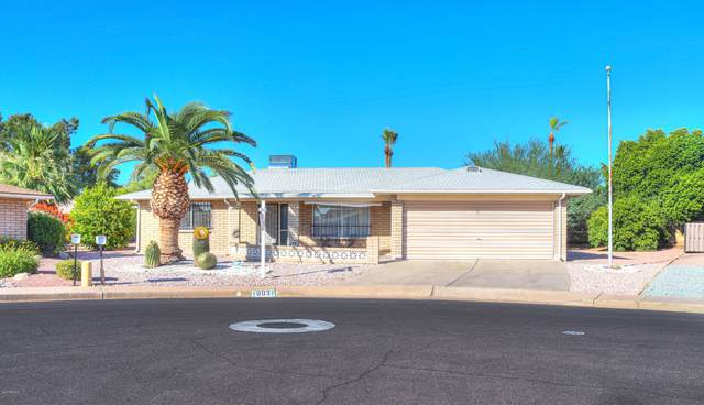 803 S Reseda, Mesa, AZ 85206 (#6100276) :: AZ Power Team | RE/MAX Results