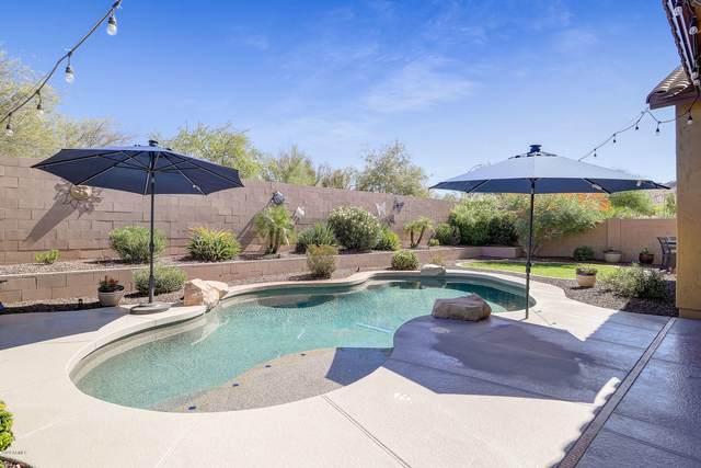 5540 W Buckhorn Trail, Phoenix, AZ 85083 (MLS #6100280) :: REMAX Professionals