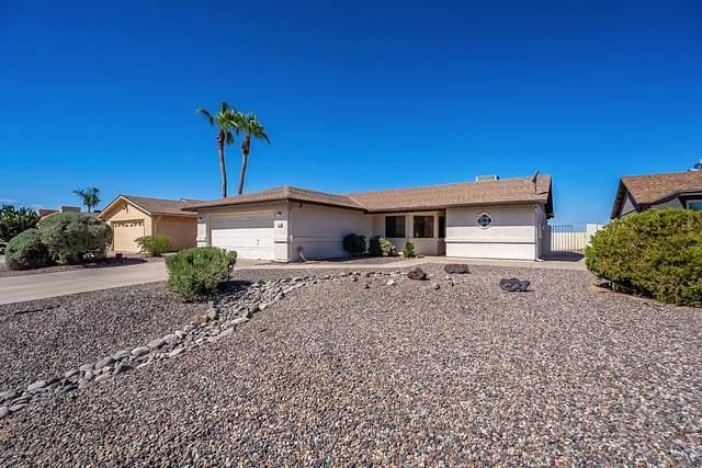 26438 S Hogan Drive, Sun Lakes, AZ 85248 (MLS #6100291) :: Midland Real Estate Alliance
