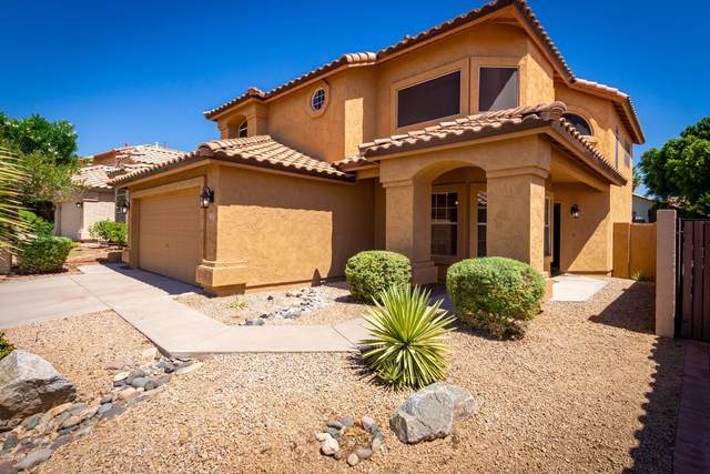 3214 E Mountain Vista Drive, Phoenix, AZ 85048 (MLS #6100323) :: Homehelper Consultants