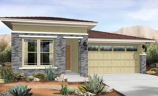 14570 W Aster Drive, Surprise, AZ 85379 (MLS #6100325) :: TIBBS Realty