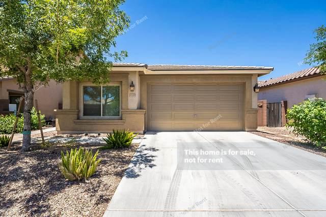 41466 N Cherry Street, San Tan Valley, AZ 85140 (MLS #6100333) :: Homehelper Consultants