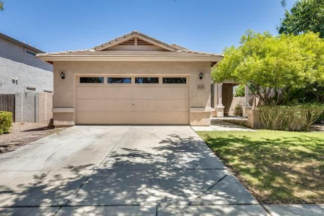 3624 E Linda Lane, Gilbert, AZ 85234 (MLS #6100336) :: Openshaw Real Estate Group in partnership with The Jesse Herfel Real Estate Group