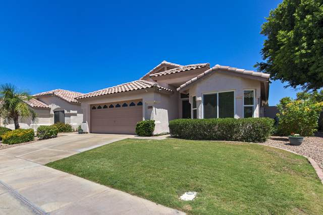1712 E Gail Drive, Chandler, AZ 85225 (MLS #6100337) :: Openshaw Real Estate Group in partnership with The Jesse Herfel Real Estate Group