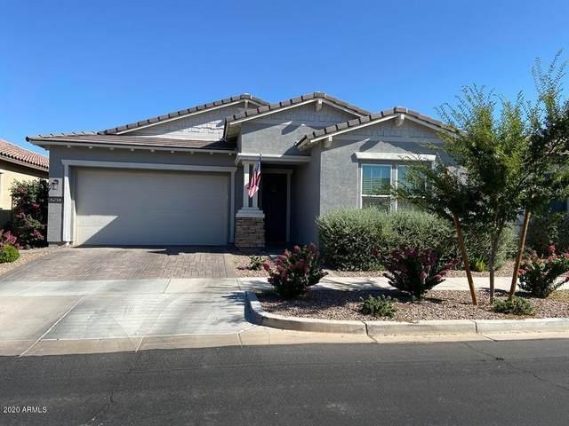 10502 E Simone Avenue, Mesa, AZ 85212 (MLS #6100346) :: Homehelper Consultants