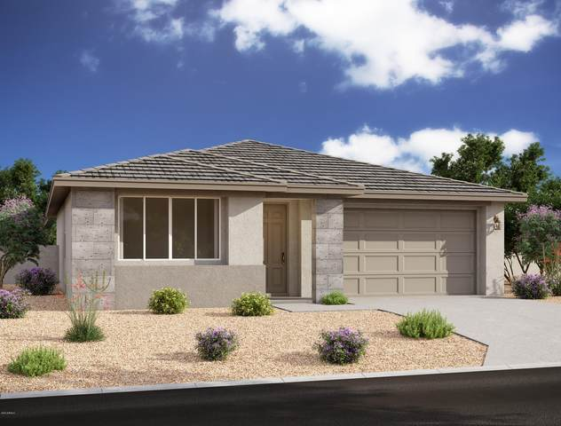 26355 N 133RD Avenue, Peoria, AZ 85383 (MLS #6100373) :: My Home Group