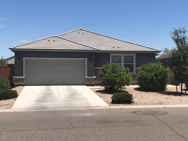 1096 W Santa Gertrudis Trail, San Tan Valley, AZ 85143 (MLS #6100422) :: Homehelper Consultants