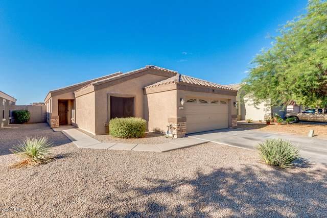 1164 E Christopher Street, San Tan Valley, AZ 85140 (MLS #6100425) :: Nate Martinez Team