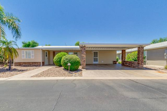 2550 S Ellsworth Road #687, Mesa, AZ 85209 (MLS #6100459) :: Brett Tanner Home Selling Team