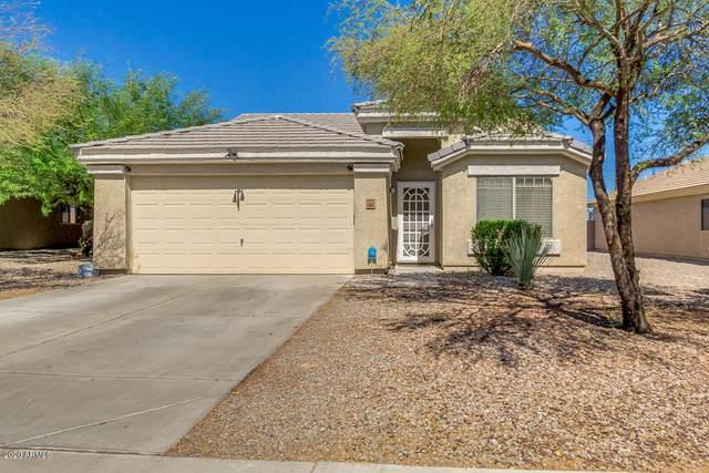 4505 N 123RD Drive, Avondale, AZ 85392 (MLS #6100461) :: Devor Real Estate Associates