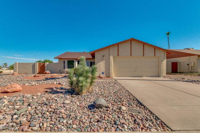 4763 E Olney Drive, Phoenix, AZ 85044 (MLS #6100472) :: Homehelper Consultants
