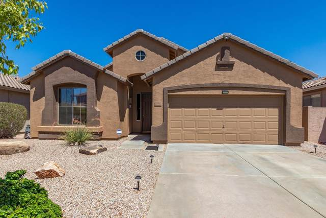 29967 N Little Leaf Drive, San Tan Valley, AZ 85143 (MLS #6100511) :: Riddle Realty Group - Keller Williams Arizona Realty