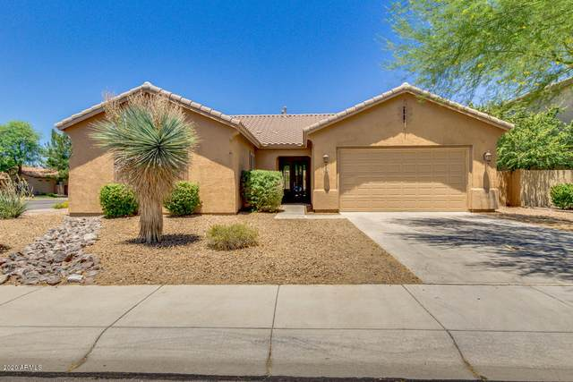 3876 E Scorpio Place, Chandler, AZ 85249 (MLS #6100542) :: Homehelper Consultants