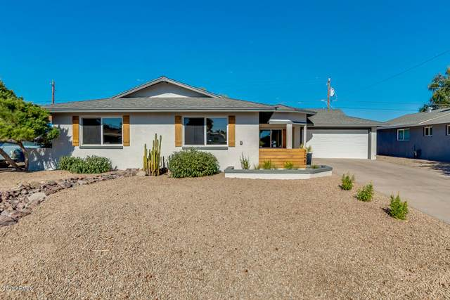 3625 S Kenneth Place, Tempe, AZ 85282 (MLS #6100552) :: Lux Home Group at  Keller Williams Realty Phoenix