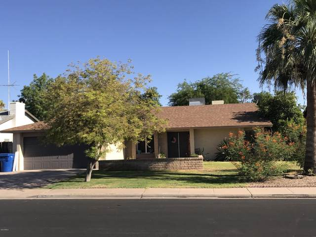 1127 W Plata Avenue, Mesa, AZ 85210 (MLS #6100576) :: The Laughton Team