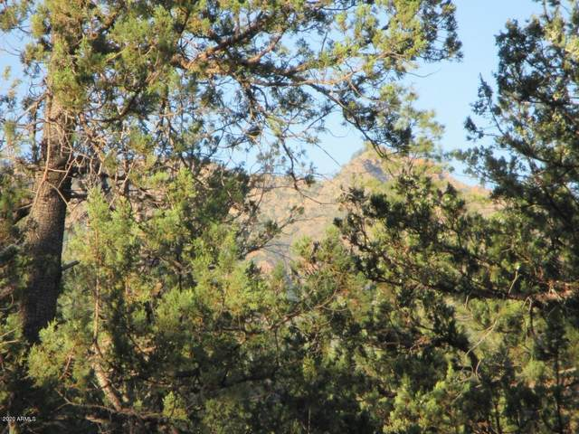 Lot 25K Verde Glen, Payson, AZ 85541 (MLS #6100588) :: Nate Martinez Team