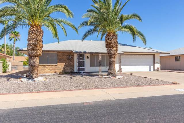 17209 N Jasmine Drive, Sun City, AZ 85373 (MLS #6100590) :: The Garcia Group
