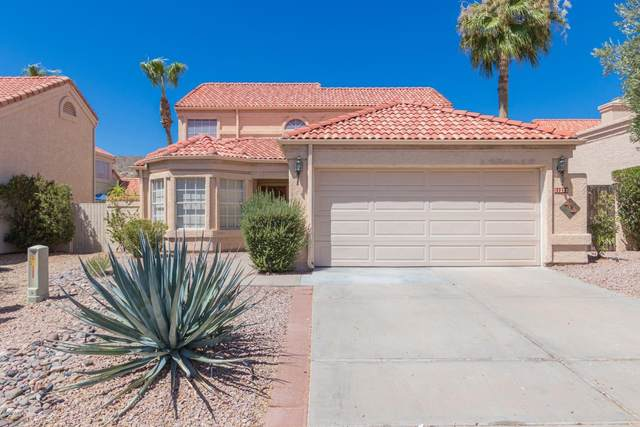 11232 E Laurel Lane, Scottsdale, AZ 85259 (MLS #6100608) :: Devor Real Estate Associates